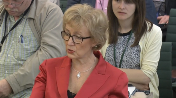 Energy Minister Andrea Leadsom. Image: Parliament TV