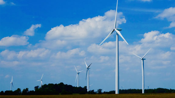 A wind farm. Image: Thinkstock