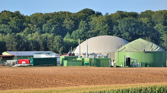 A biogas plant. Image: Shutterstock